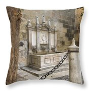 Granada Cathedral Doors And Other Details Throw Pillow