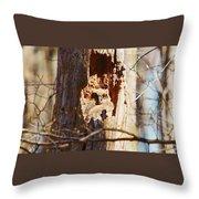Great Horned Owlet Throw Pillow