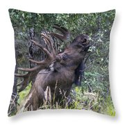 High Reach Throw Pillow