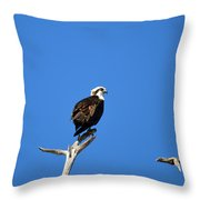 High Up Throw Pillow