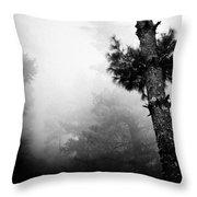 Himalyas Mist Throw Pillow