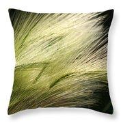 Hordeum Jubatum Grass Throw Pillow