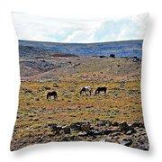 3 Horses At 4 Corners Throw Pillow