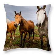 3 Horses Throw Pillow