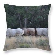 3 Horses Throw Pillow