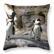 Humboldt Penguin Throw Pillow