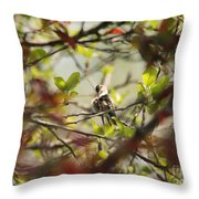 Hummingbird In Spring Throw Pillow