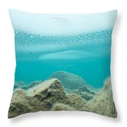 Ice Floats In Shallow Lake With Rock Reflections Throw Pillow