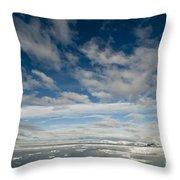 Ice Floes, Spitsbergen Throw Pillow