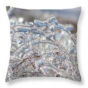 Ice Storm Alfalfa Throw Pillow