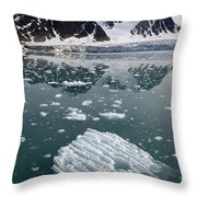 Icebergs Near The Monaco Glacier Throw Pillow