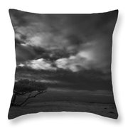 Infrared Picture Of Nature Areas In The Netherlands Dwingelderveld Throw Pillow by Ronald Jansen