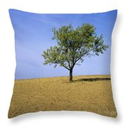 Isolated Tree Throw Pillow