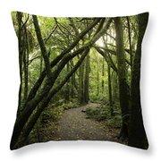 Jungle Trail Throw Pillow