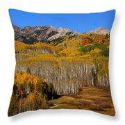 Kebler Color Show Throw Pillow