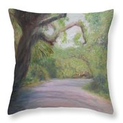 Kingsley Plantation Road Throw Pillow