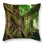 Kipahulu Banyan Tree Throw Pillow