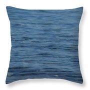 Lake Ripples Throw Pillow
