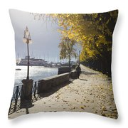 Lakefront Throw Pillow