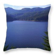 Lakes 1 Throw Pillow