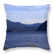 Lakes 5 Throw Pillow