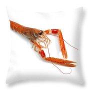 Langoustine Throw Pillow