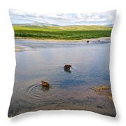 3-lay Of Land Grizzly Bears In Moraine River In Katmai National Preserve-ak Throw Pillow