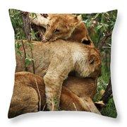 Lion Cubs On The Masai Mara  Throw Pillow