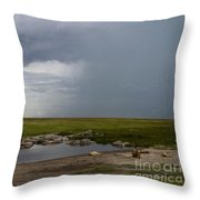 Lions In The Serengeti Throw Pillow
