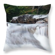 Little Falls Throw Pillow