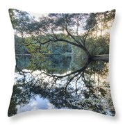 Live Oak Reflections Throw Pillow