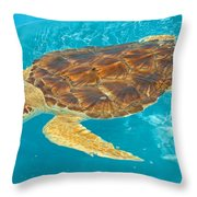 Loggerhead Sea Turtle Throw Pillow