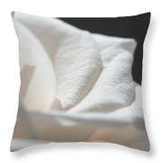 Long-stemmed White Rose Throw Pillow