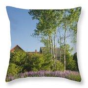 Maine Wild Lupine Flowers Throw Pillow