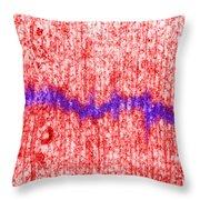 Mitotic Spindle Tem Throw Pillow