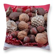 Mixed Holiday Nuts Throw Pillow