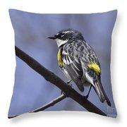 Myrtle Warbler Throw Pillow
