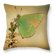 Nature And Places Of Spain Throw Pillow