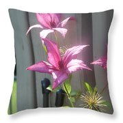 3 Of A Kind   # Throw Pillow