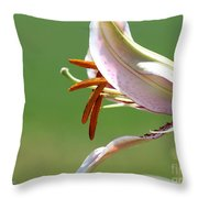Oriental Lily Named Tiger Edition Throw Pillow