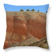 Painted Hills Of Oregon Throw Pillow