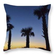 Carolina Palm Sky Throw Pillow