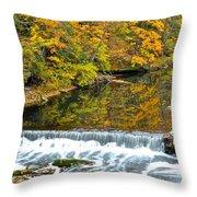 Panoramic Beauty Throw Pillow