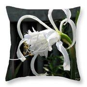 Peruvian Daffodil Named Advance Throw Pillow