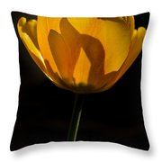 Petals And Sun Throw Pillow