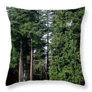Picnic With The Giants Throw Pillow