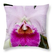 Pink Orchid Throw Pillow
