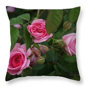 3 Pink Roses Throw Pillow