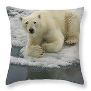 Polar Bear Resting On Ice Throw Pillow