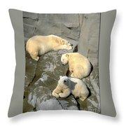 3 Polars Throw Pillow